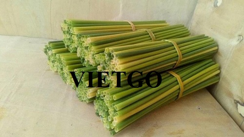 Cơ hội xuất khẩu ống hút gạo và ống hút cỏ sang thị trường Ấn Độ