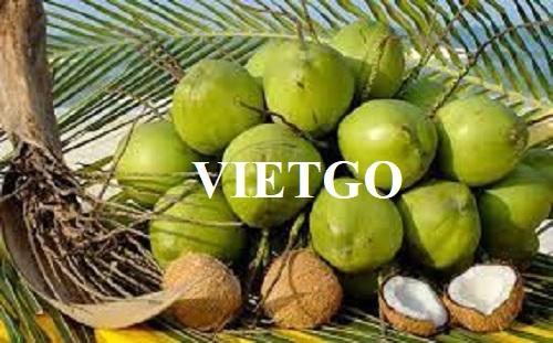 Cơ hội xuất khẩu dừa tươi sang thị trường Trung Quốc
