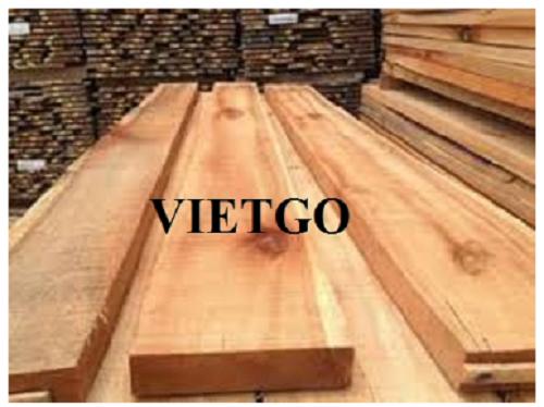 Cơ hội xuất khẩu 10 container 20ft gỗ bạch đàn xẻ hàng tháng sang thị trường Ấn Độ