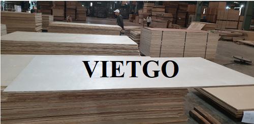 Cơ hội xuất khẩu 2 container 40ft gỗ dán hàng tháng sang thị trường Ấn Độ