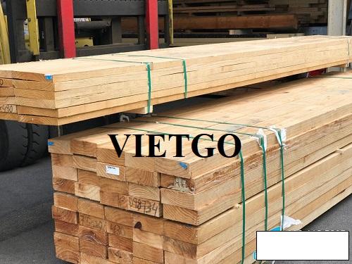 Cơ hội xuất khẩu 5 container 20ft gỗ thông xẻ hàng tháng sang thị trường Mỹ
