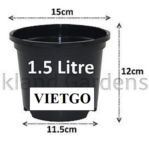 Cơ hội xuất khẩu 3 container 40HQ chậu cây nhựa sang thị trường Ả Rập Xê - út
