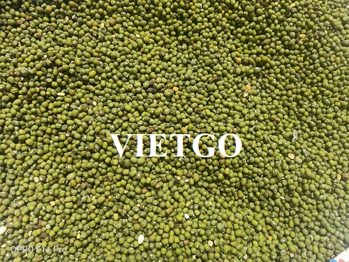 Opportunity to export mung beans to Bangladesh