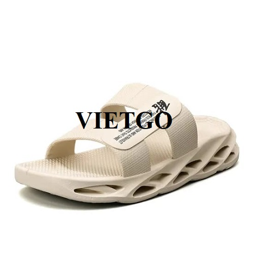 Opportunity to supply fashion plastic sandals to the Indian market