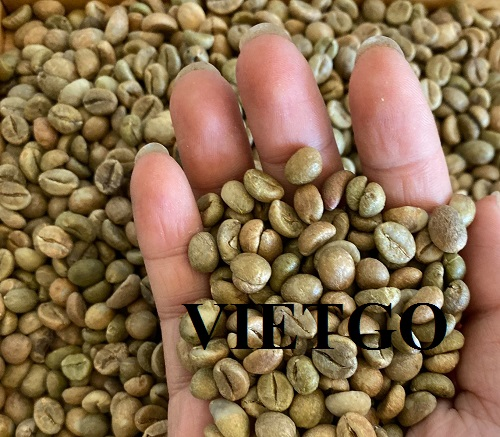 Opportunity to export coffee beans to Indian market