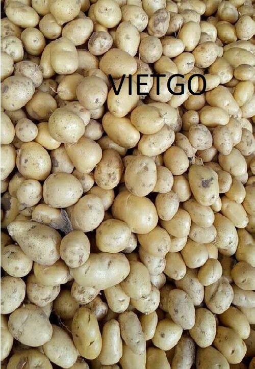 Cơ hội xuất khẩu khoai tây sang thị trường Benin