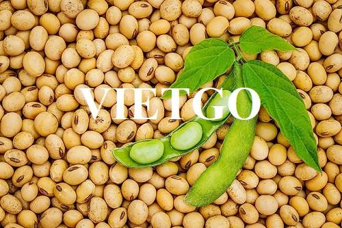 Cơ hội xuất khẩu hạt đậu nành sang thị trường Ấn Độ