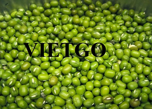 Opportunity to export Mung beans to the Bangladesh market
