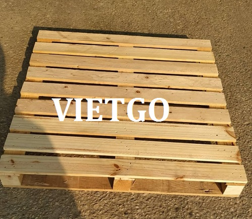 Opportunity to export pine wood pallets to Singapore market