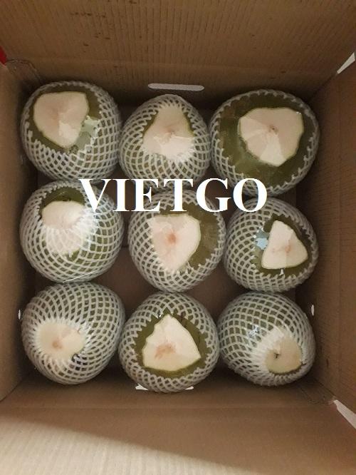 Cơ hội xuất khẩu Dừa tươi sang thị trường Nga