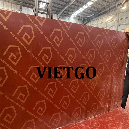 Opportunity to export film faced plywood from a Chinese customer