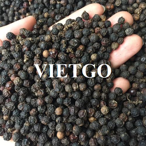 Opportunity to export black pepper weekly to the Dubai market