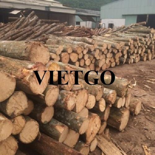 Cơ hội xuất khẩu gỗ bạch đàn tròn sang thị trường Iran