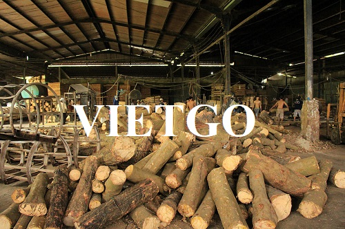 Opportunity to export rubber wood logs to Iran market
