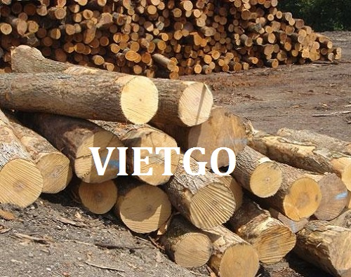 Opportunity to export teak wood logs to Iran market