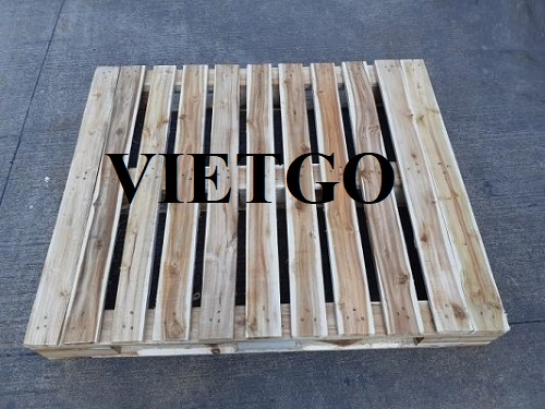 Opportunity to export 250 wooden pallets weekly to the US market