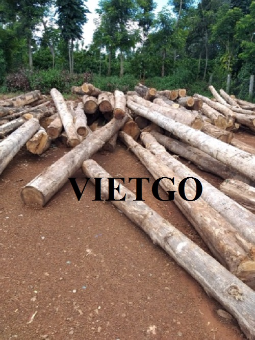 Opportunity to export teak logs to the India, China and New Zealand markets