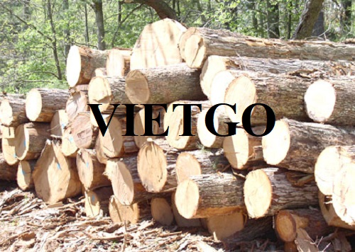 Opportunity to export rubber wood logs to Malaysia market