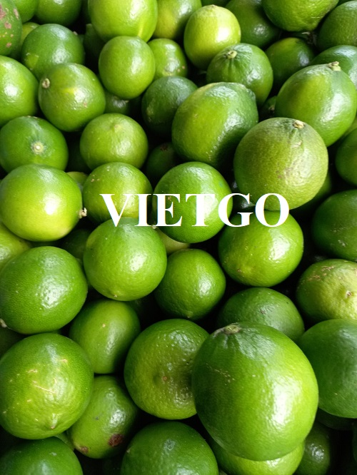Opportunity to export limes weekly to the Omani market