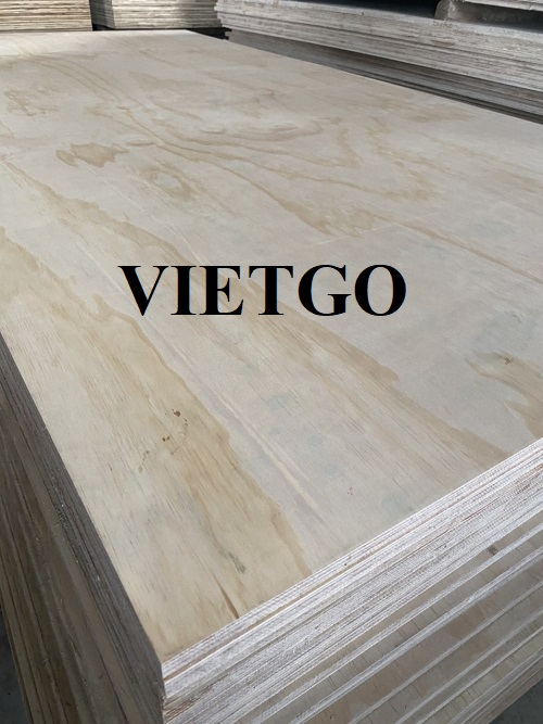 Opportunity to export plywood to the Korean market