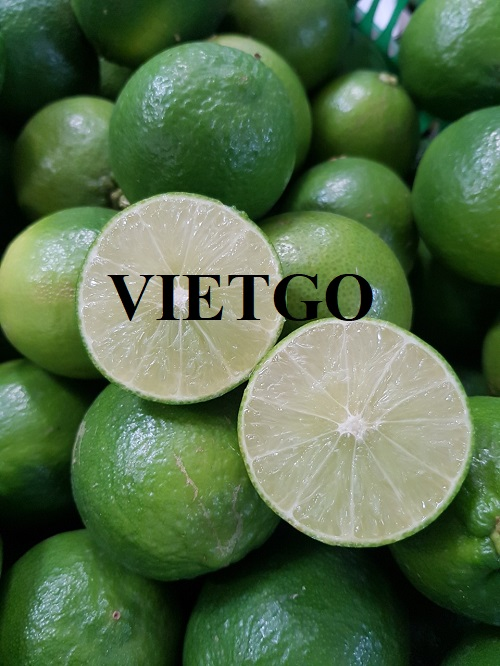 Opportunity to export fresh lime to Dubai market