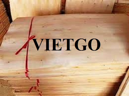 Opportunity to export 3 containers 40ft of veneer to the Indian market