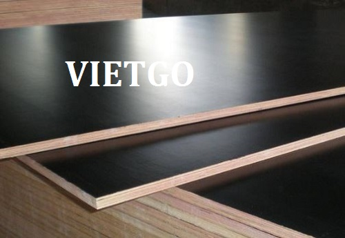 Opportunity to export 500 film-coated plywood sheets monthly to the Indian market