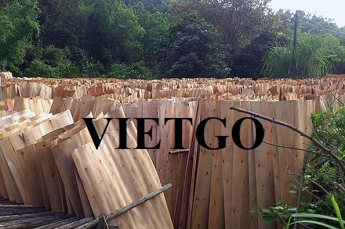 A Chinese trader needs to import 20.000 m3 rubber veneer yearly to make container floors