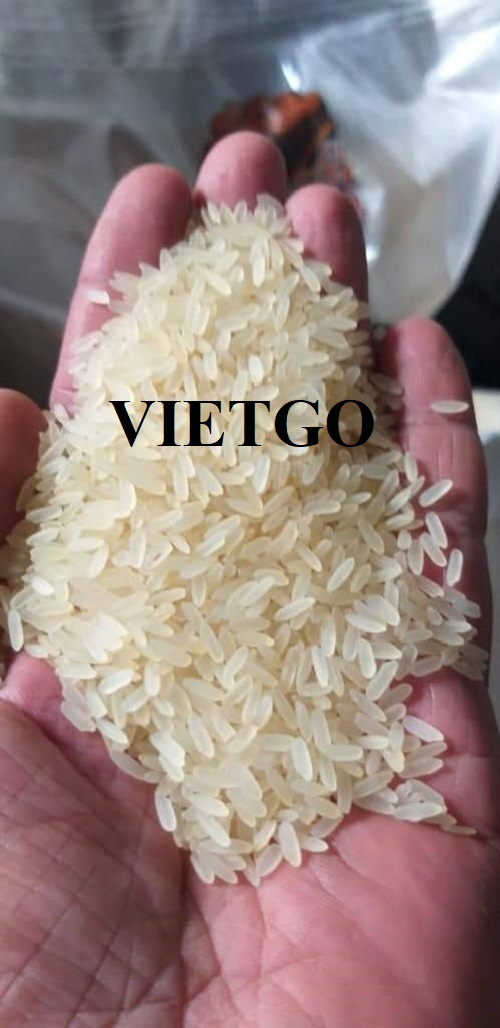 Cơ hội xuất khẩu Gạo sang thị trường Togo