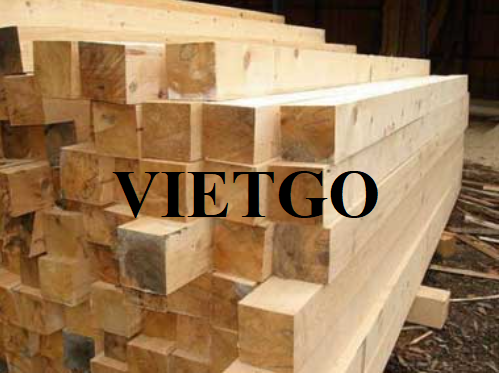Opportunity to regularly export pine timbers to the German market