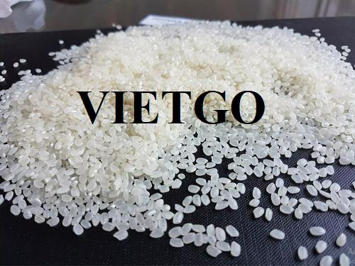 Cơ hội xuất khẩu gạo trắng sang thị trường Libya