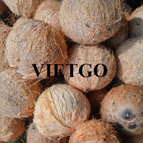 Cơ hội xuất khẩu trái dừa sang thị trường Ả Rập Xê-út