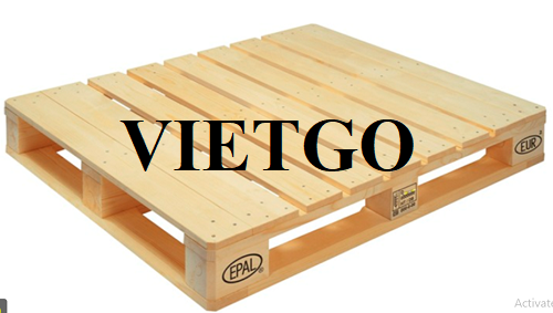 Opportunity to regularly export wooden pallets to the Hong Kong market