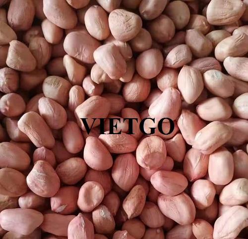 Cơ hội xuất khẩu Lạc nhân sang thị trường Ý