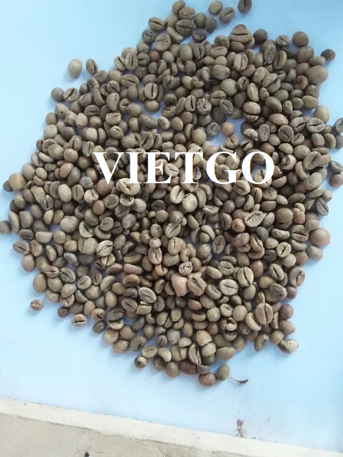 Opportunity to export coffee beans to the Chinese market