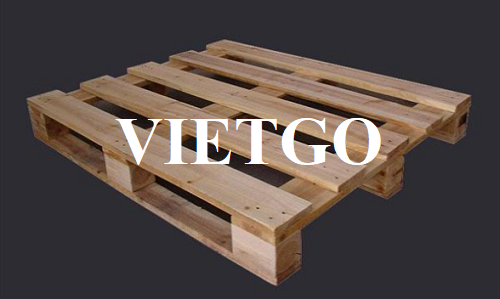 Opportunity to export 1000 pine wood pallets monthly to Malaysia market