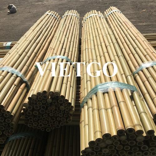 Cơ hội cung cấp 2 triệu chiếc gậy tre cho một dự án xây dựng tại Indonesia