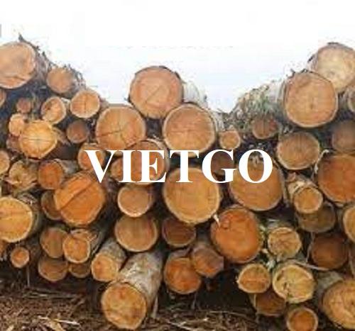 Cơ hội xuất khẩu gỗ bạch đàn xẻ và tròn sang thị trường Trung Quốc