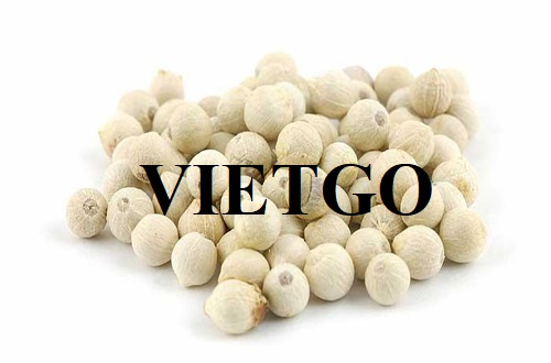 Opportunity to export white pepper to the Egyptian market
