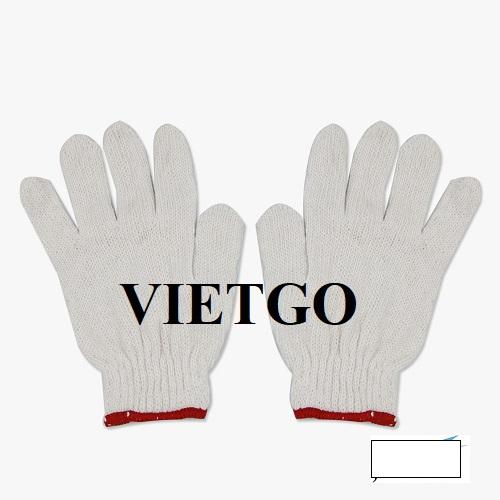 Cơ hội xuất khẩu găng tay vải số lượng lớn cho vị khách hàng đến từ Singapore