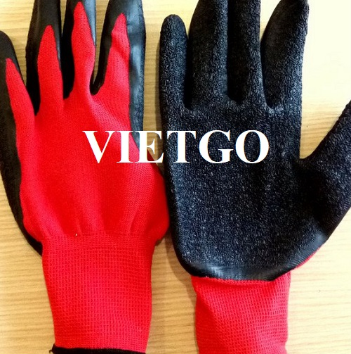 Cơ hội xuất khẩu số lượng lớn mặt hàng găng tay lao động cho vị khách hàng đến từ Ba Lan