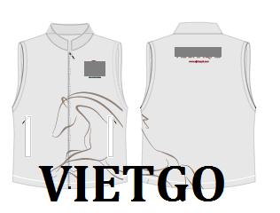 detmay-vietgo-020219