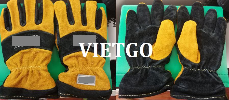 gangtay-vietgo-240119