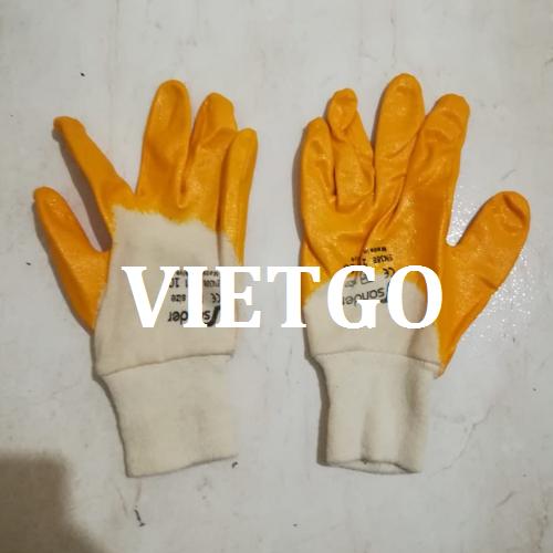 gantay-vietgo-030119